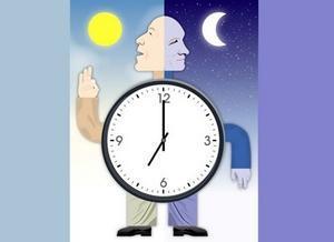 生物钟黑白颠倒_迅速而简便测定生物钟的方法