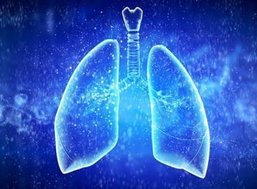 致幻觉药物可抑制哮喘