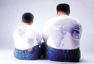 肥胖者的免疫T细胞异常