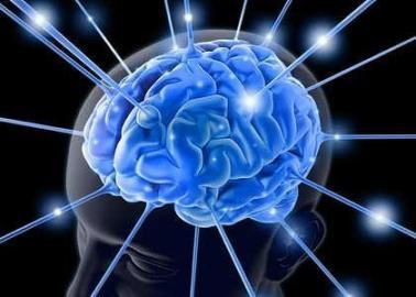大脑保持活跃状态可延缓阿尔茨海默病发生