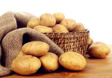 小土豆,大影响